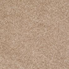 Shaw Floors Home Foundations Gold Favorite Choice 12′ Macaroon 00104_HGL45