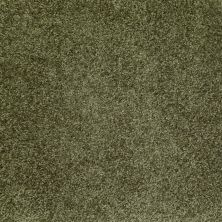 Shaw Floors Home Foundations Gold Favorite Choice 12′ Central Park 00301_HGL45