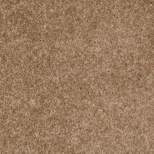 Shaw Floors Home Foundations Gold Favorite Choice 12′ Veranda 00700_HGL45
