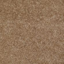 Shaw Floors Home Foundations Gold Favorite Choice 12′ Bungalow 00701_HGL45