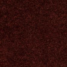Shaw Floors Home Foundations Gold Favorite Choice 12′ Chianti 00801_HGL45