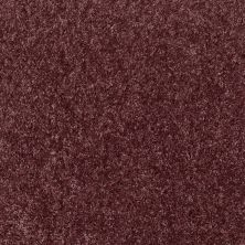 Shaw Floors Home Foundations Gold Favorite Choice 12′ Amethyst Sky 00900_HGL45