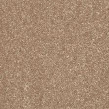 Shaw Floors Home Foundations Gold Fast Ball 15′ Tassel 00107_HGL46