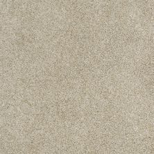 Shaw Floors Home Foundations Gold Subtle Art Angora 00121_HGN25