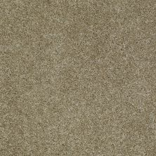 Shaw Floors Home Foundations Gold Subtle Art Safari 00720_HGN25