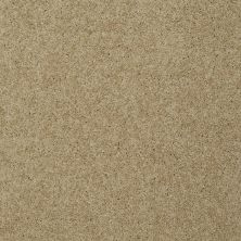 Shaw Floors Home Foundations Gold Emerald Bay III Taffeta 00107_HGN53