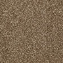 Shaw Floors Home Foundations Gold Peachtree I (t) Cork Board 00711_HGN77
