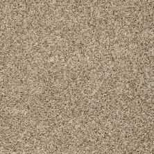 Shaw Floors Home Foundations Gold Bungalow (b) Coffee Cake 00131_HGN79