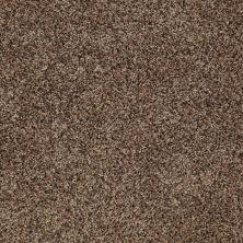 Shaw Floors Home Foundations Gold Bungalow (t) Kodiak Bear 00741_HGN80
