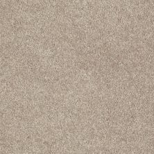 Shaw Floors Home Foundations Gold Modern Image 12′ Plaster 55752_HGP19