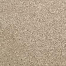 Shaw Floors Home Foundations Gold Modern Image 15′ Dusty Trail 55793_HGP20