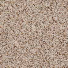Shaw Floors Home Foundations Gold Sweet Vision Sand Swept 00100_HGP33