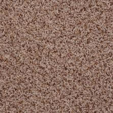Shaw Floors Home Foundations Gold Sweet Vision Summer Taupe 00710_HGP33