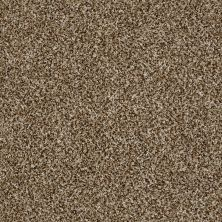 Shaw Floors Home Foundations Gold Grand Isle Bits Of Brown 00200_HGP58