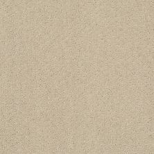 Shaw Floors Home Foundations Gold Cascade Falls Studio Taupe 00173_HGP78