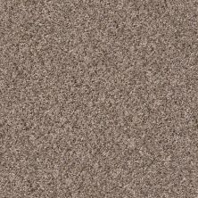 Shaw Floors Home Foundations Gold Fiesta Island Brown Reed 00751_HGR04