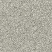 Shaw Floors Home Foundations Gold Heron Cove Soft Fleece 120T_HGR10