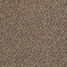 Shaw Floors Home Foundations Gold Vintage Style Safari 00112_HGR22