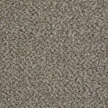 Shaw Floors Home Foundations Gold Vintage Style Sweet Taupe 00532_HGR22