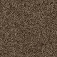 Shaw Floors Home Foundations Gold Vintage Style Good Earth 00712_HGR22