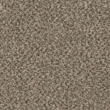 Shaw Floors Home Foundations Gold Vintage Style Toast 00730_HGR22