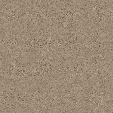 Shaw Floors Home Foundations Gold Graceful Finesse Wheat Field 00102_HGR23