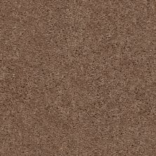 Shaw Floors Home Foundations Gold Graceful Finesse Clay 00701_HGR23