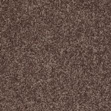 Shaw Floors Home Foundations Gold Graceful Finesse Mocha 00704_HGR23