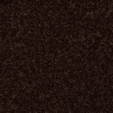 Shaw Floors Home Foundations Gold Graceful Finesse Coffee Bean 00705_HGR23