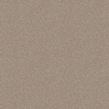 Shaw Floors Home Foundations Gold Wind Dancer Sunkissed 00710_HGR70