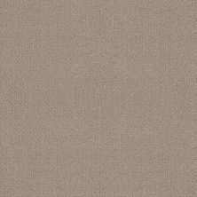 Shaw Floors Builder Specified Water's Edge Perfect Taupe 00119_HGR77