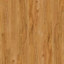 Shaw Floors Home Fn Gold Laminate Clermont Gobi 00274_HL070