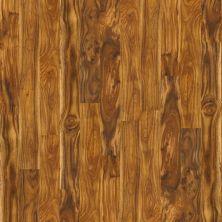 Shaw Floors Home Fn Gold Laminate Courtyard Natural Acacia 00294_HL081