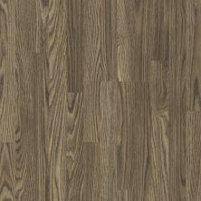 Shaw Floors Home Fn Gold Laminate Living Image Regal Oak 07027_HL111