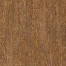 Shaw Floors Home Fn Gold Laminate Labrador Badin Lake Hickory 00246_HL230