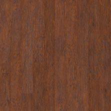 Shaw Floors Home Fn Gold Laminate Labrador Raven Rock Hickory 00863_HL230