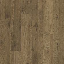 Shaw Floors Home Fn Gold Laminate Williamsburg Alamo Hickory 02001_HL367