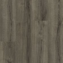 Shaw Floors Versalock Laminate Emergence Plus Kismet 05044_HL444