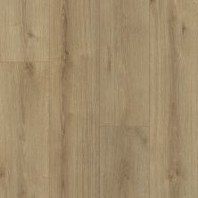Shaw Floors Versalock Laminate Emergence Plus Blaze 07717_HL444