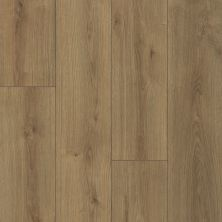 Shaw Floors Versalock Laminate Emergence Plus Dawn 07721_HL444