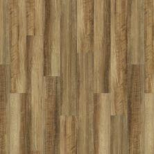 Shaw Floors Vinyl Residential Islip Plus Malta 00203_HSS41