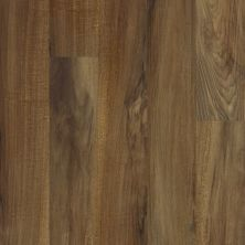 Shaw Floors Resilient Residential Islip Plus Verona 00802_HSS41
