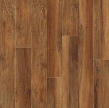 Shaw Floors Vinyl Residential Islip Plus Venna 00820_HSS41
