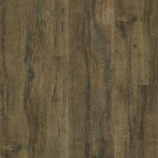 Shaw Floors Resilient Residential Jepson Plus Vercelli 00799_HSS42