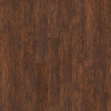 Shaw Floors Resilient Residential San Gorgonio Rosso 00710_HSS43
