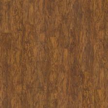 Shaw Floors Resilient Residential San Gorgonio Plus Oro 00255_HSS44