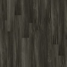 Shaw Floors Vinyl Residential Three Sisters Plus Grandstand 00902_HSS46