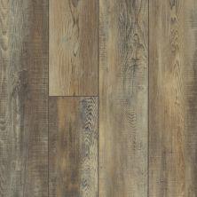 Shaw Floors Vinyl Residential Pearsoll Plus Saggio 00159_HSS49
