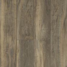 Shaw Floors Vinyl Residential Pearsoll Plus Ardesia 00558_HSS49