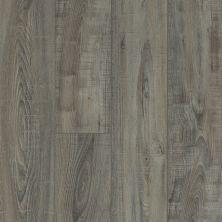 Shaw Floors Vinyl Residential Pearsoll Plus Temporale 00578_HSS49